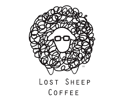 Q & A with Lost sheep